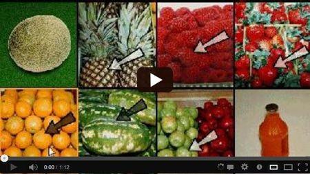 Фундопликация по ниссену послеоперационная диета